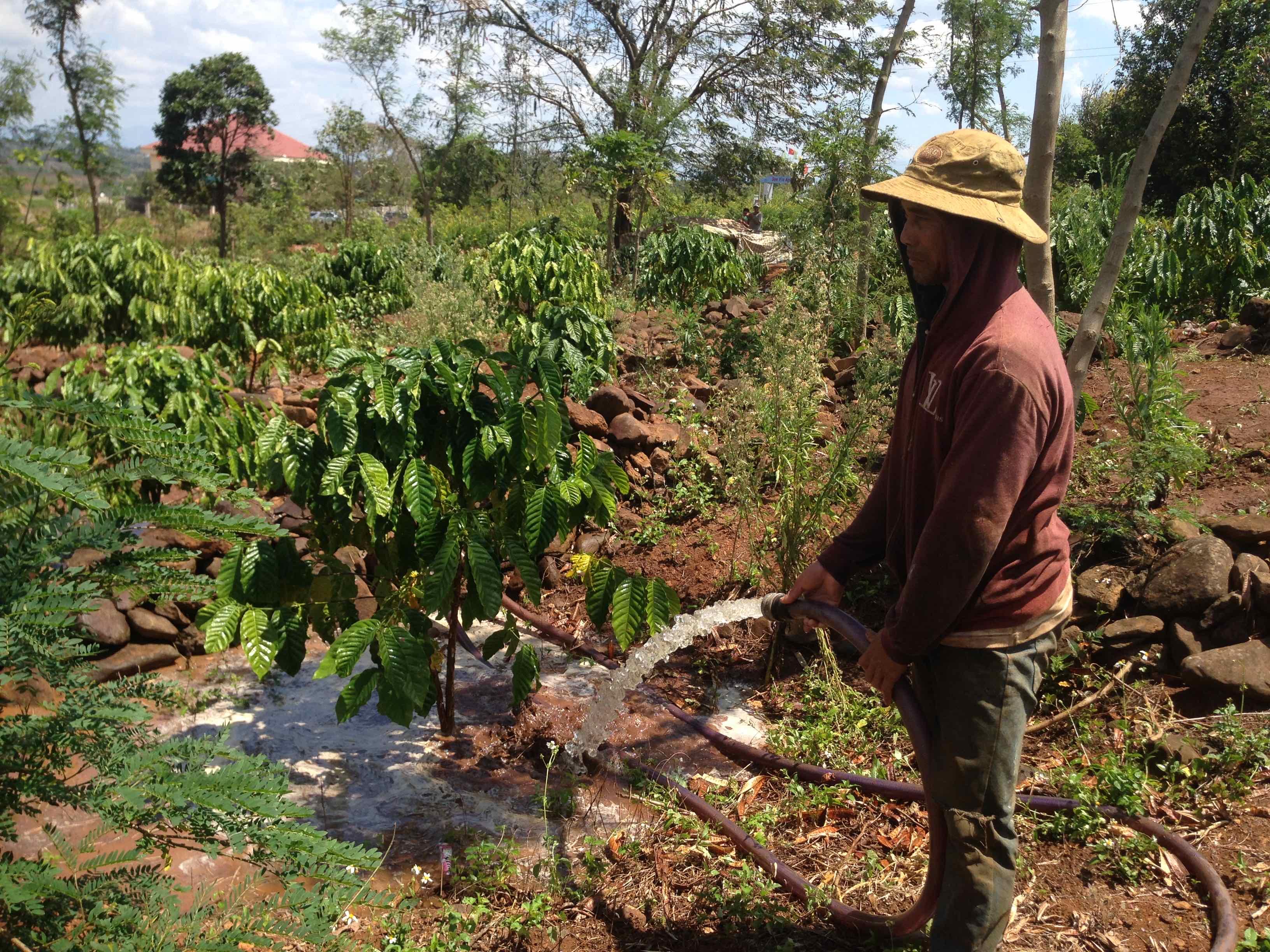Rob Rendell Vietnam irrigation